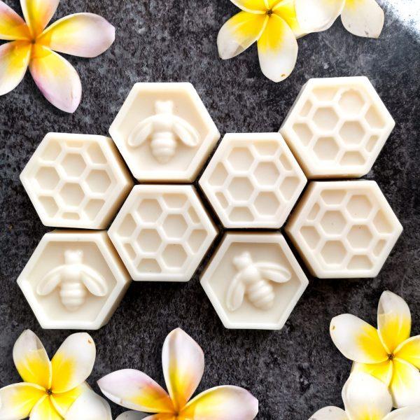 frangipani & Coconut Wax Melts